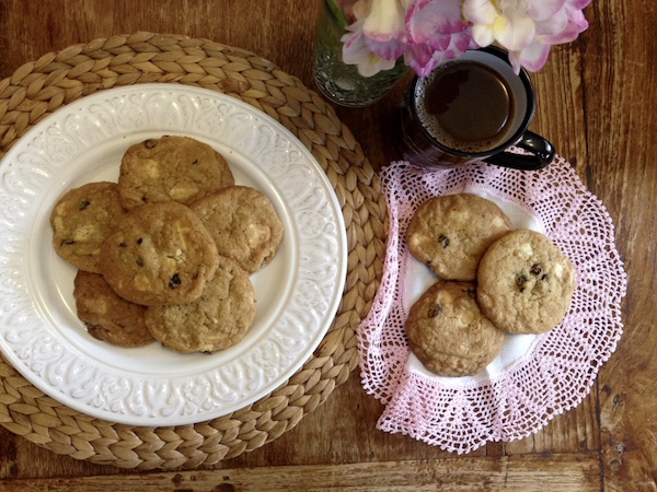 cookies cranberries leykh sokolata1