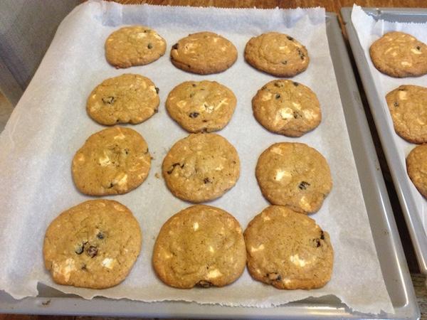 cookies cranberries leykh sokolata13