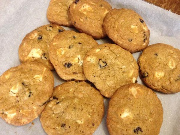 cookies cranberries leykh sokolata14