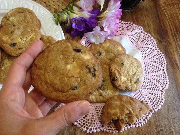 cookies cranberries leykh sokolata16