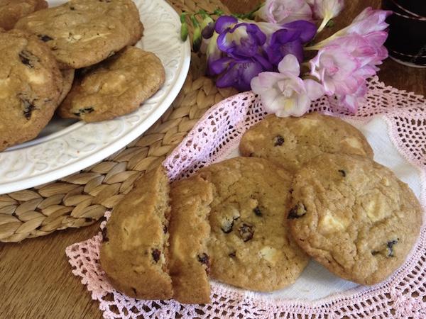 cookies cranberries leykh sokolata17