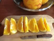 portokali glyko5